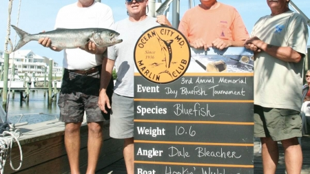 Fourth annual Mem. Day Bluefish Tourney this wknd.