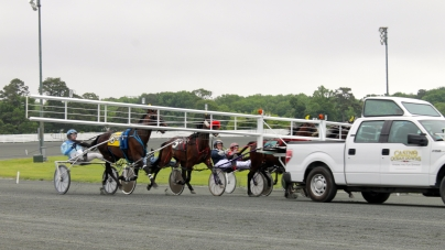 Live harness racing under way at Ocean Downs