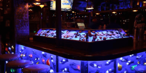 Best Bars in Ocean City (of 2018!)