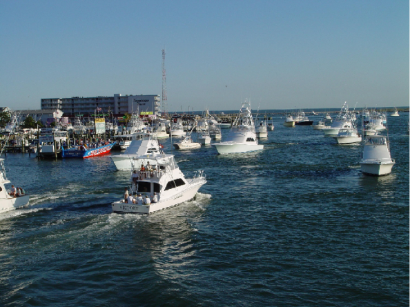 White Marlin Open Kicks Off in Unprecedented Times