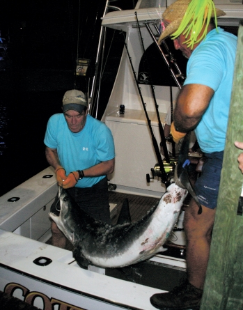 White Marlin Open kicks off Monday, runs through Friday
