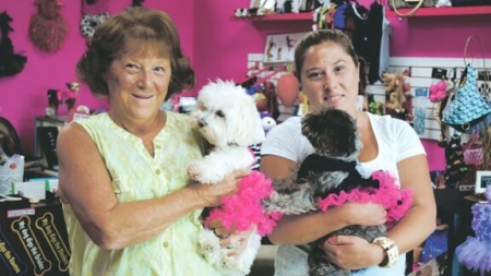 Store where style, accessories, food goes to the dogs