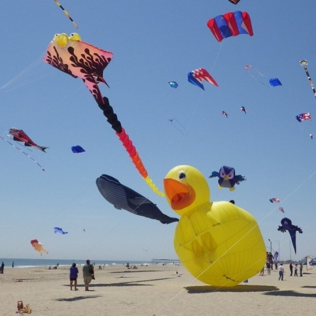 Colorful kites to fill sky throughout weekend in resort