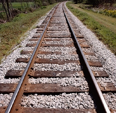 All aboard for 'phase II' excursion train study