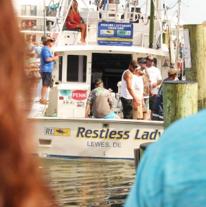Creature Feature: Ocean City, White Marlin Capital of the World