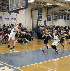 Seahawks top Eagles in 3A South Reg. Section I semis