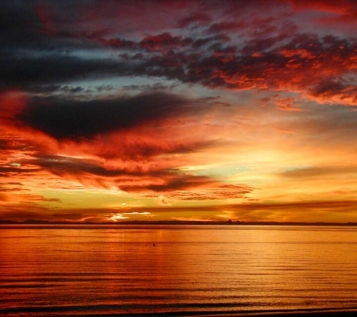 Sun Painted Skies (16 Photos)