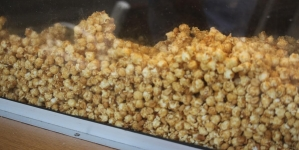 The First Name in Ocean City Popcorn: Fisher's Popcorn