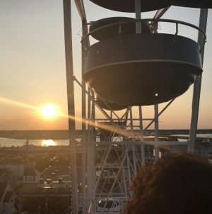 All You've Ever Wanted to Know About the Jolly Roger Ferris Wheel