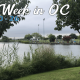 This Week in OC: Jeeps and Viking Ships