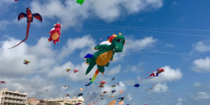 Only in Ocean City: Go Fly A Kite, Literally, at The Kite Loft