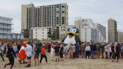 25th Annual Penguin Swim: They Braved the Cold!