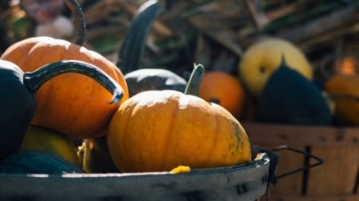 This Week in OC: Welcome October!