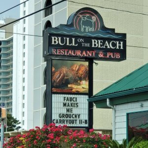 Bull on the Beach Has Jokes