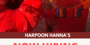 Harpoon Hanna's is Hiring